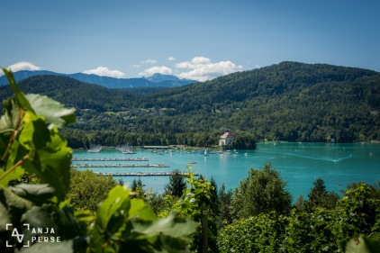 View on vineyards and Wörthersee Lake
